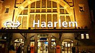 Martin Levie, Tandarts Haarlem